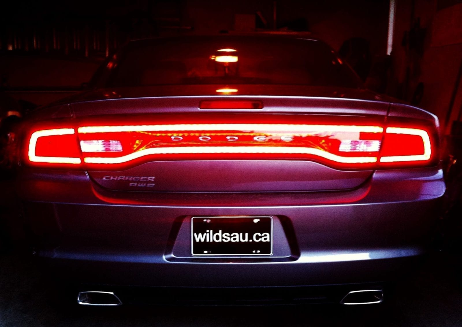 Rear Lights Wildsau