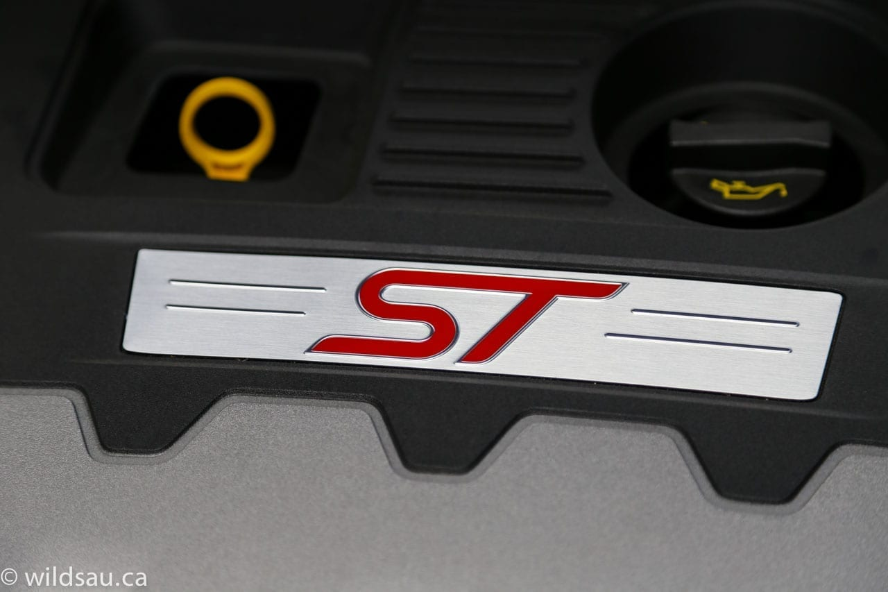 engine bay ST badge