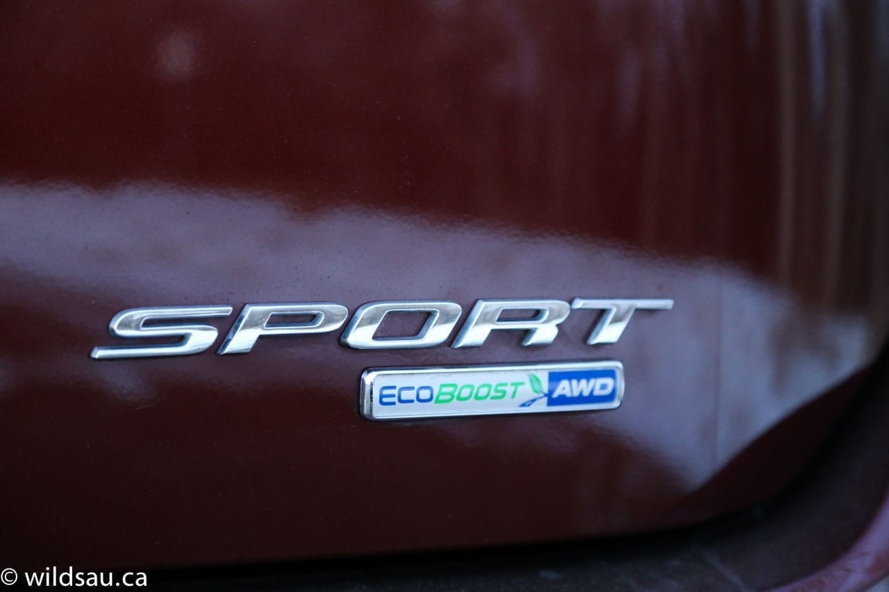 Sport EB badge